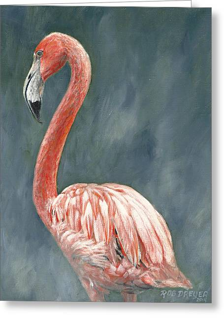 Wading Bird Greeting Cards - Pink Flamingo Greeting Card by Rob Dreyer AFC