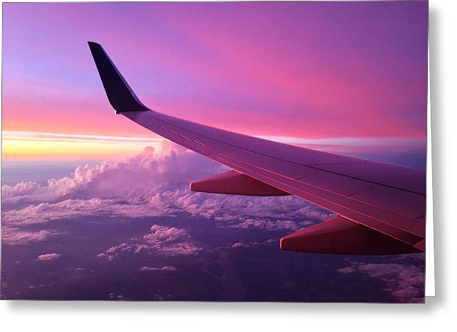 Evening Lights Greeting Cards - Pink Flight Greeting Card by Chad Dutson