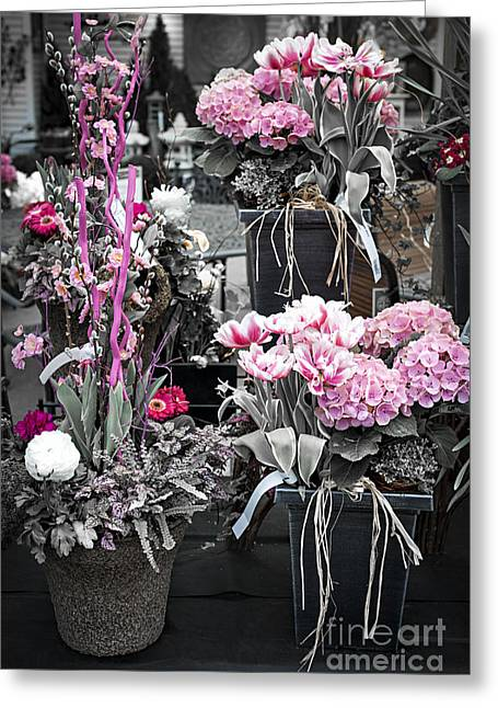 Basket Pot Greeting Cards - Pink flower arrangements Greeting Card by Elena Elisseeva