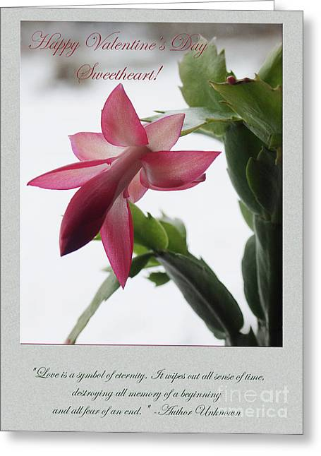 Dantzler Greeting Cards - Pink Flower Valentine #1 Greeting Card by Andrew Govan Dantzler