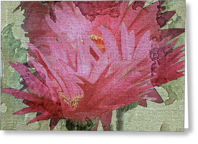 Abstract Expression Greeting Cards - Pink Ganzias Greeting Card by Irma BACKELANT GALLERIES