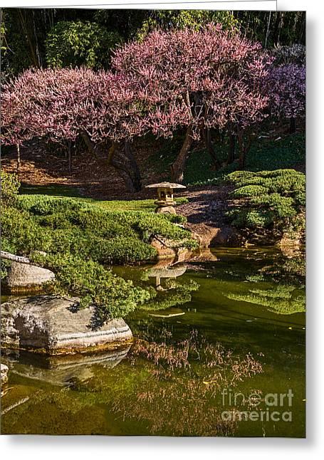 Apricot Tree Greeting Cards - Pink Gardens Greeting Card by Jamie Pham