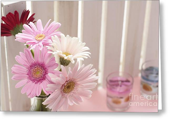 Aquatic Pyrography Greeting Cards - Pink Gerbera Greeting Card by Boon Mee