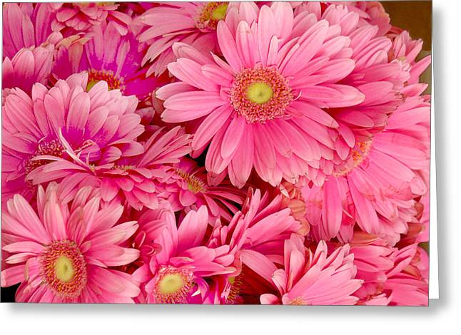 Pink Gerbera Daisies Greeting Card by Art Block Collections