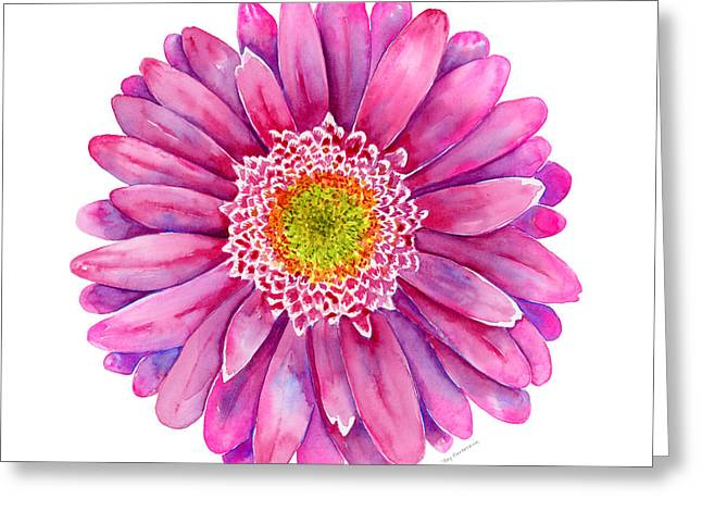 Gerbera Greeting Cards - Pink Gerbera Daisy Greeting Card by Amy Kirkpatrick