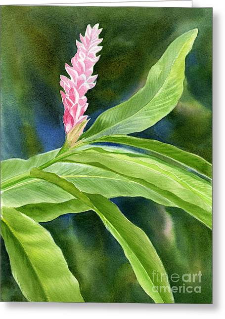 Pink Ginger Flower Greeting Card by Sharon Freeman