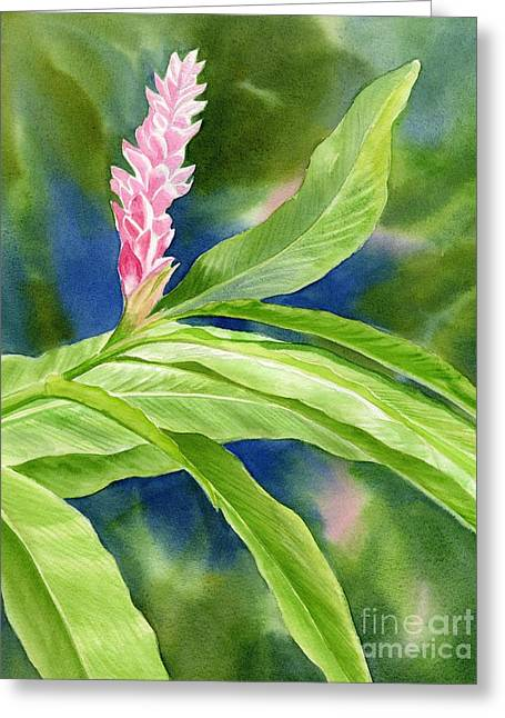 Tropical Plants Greeting Cards - Pink Ginger with Blue Green Background Greeting Card by Sharon Freeman