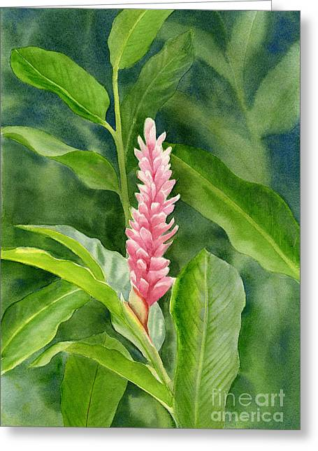 Pink Blossoms Greeting Cards - Pink Ginger with Leafy Background Greeting Card by Sharon Freeman