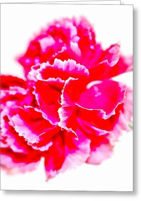 Pink Carnations Greeting Cards - Pink Glory Greeting Card by Krissy Katsimbras