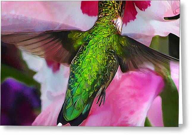 Pink Hummer Greeting Card by Bill Caldwell -        ABeautifulSky Photography