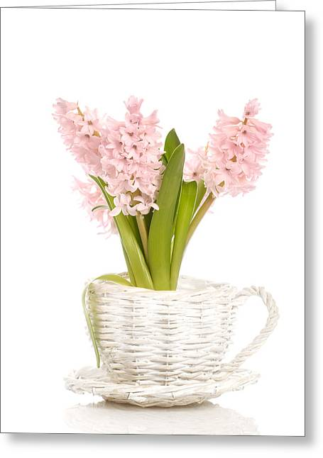 Basket Pot Greeting Cards - Pink Hyacinths Greeting Card by Amanda And Christopher Elwell