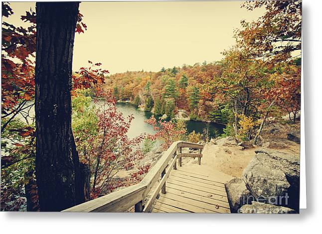 Gatineau Park Greeting Cards - Pink Lake Greeting Card by Audrey Wilkie