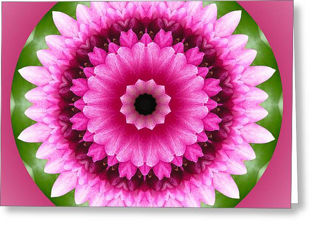 Blooms Greeting Cards - Pink Lotus Kaleidoscope Greeting Card by Betty Denise