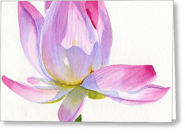 Pink Lotus Greeting Cards - Pink Lotus Square Design Greeting Card by Sharon Freeman