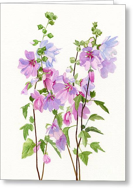 Hollyhocks Greeting Cards - Pink Mallow Flowers Greeting Card by Sharon Freeman