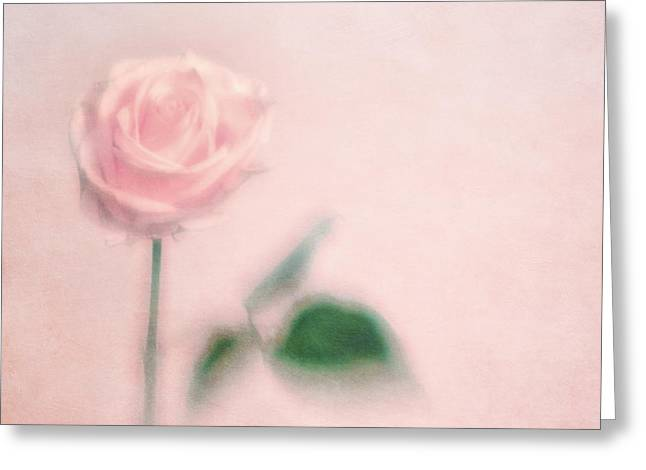 Dreamy Photographs Greeting Cards - pink moments II Greeting Card by Priska Wettstein