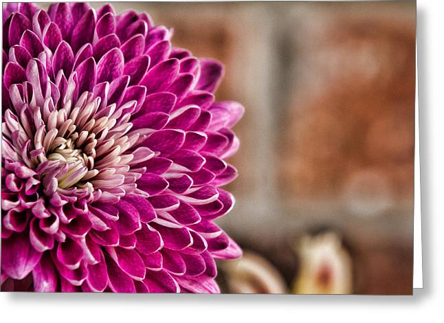 Pink Mum Greeting Card by Lana Trussell