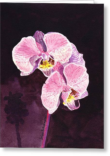 Orchids Greeting Cards - Pink Orchid Greeting Card by Irina Sztukowski