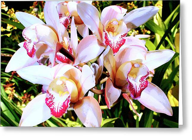 Pink Flower Prints Greeting Cards - PINK ORCHIDS Palm Springs Greeting Card by William Dey
