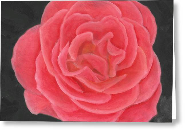 Petals Pastels Greeting Cards - Pink Pastel Rose Greeting Card by Barbara St Jean
