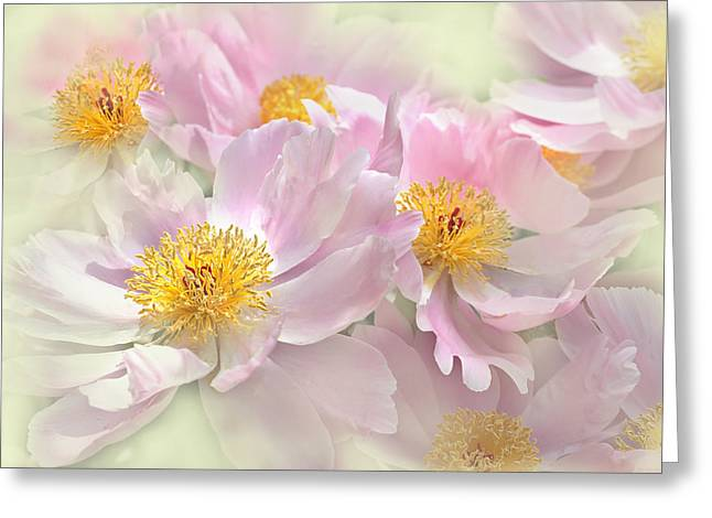 Green And Yellow Greeting Cards - Pink Peony Flowers Parade Greeting Card by Jennie Marie Schell