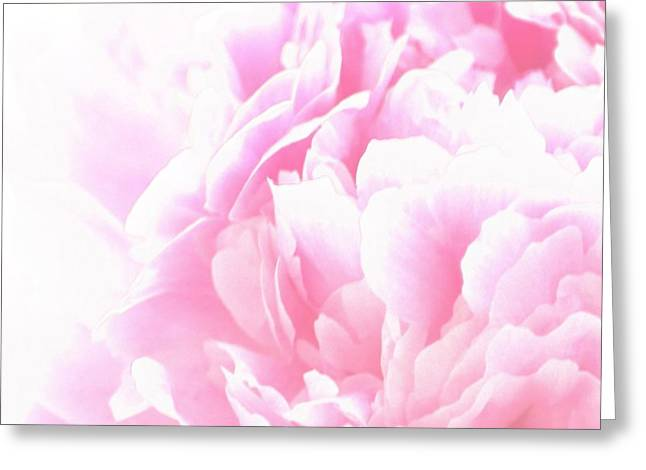 Pale Pink Greeting Cards - Pink Peony Greeting Card by Sharon Lisa Clarke