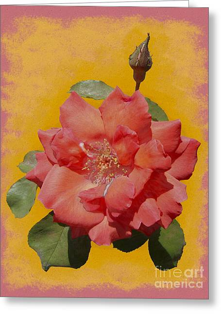 Textured Floral Pastels Greeting Cards - Pink Petals Greeting Card by WickedRefined- ND