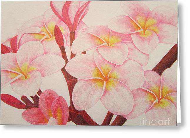 Coloured Greeting Cards - Pink Plumeria Greeting Card by Sharon Patterson
