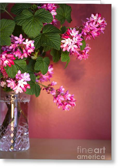Cut Glass Greeting Cards - Pink Posy Greeting Card by Jan Bickerton