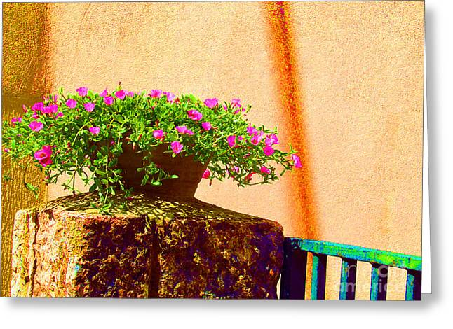 Pink Potted Flowers And Bench Greeting Card by Tina M Wenger