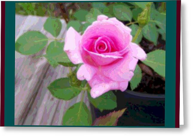 Wooden Platform Greeting Cards - Pink Potted Rose Enhanced Teal and Burgundy Borders Greeting Card by L Brown