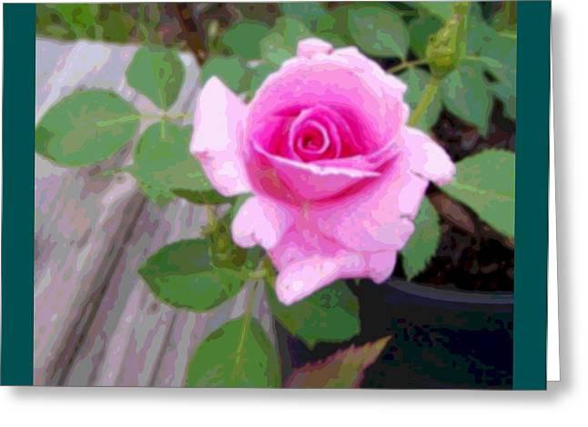 Wooden Platform Greeting Cards - Pink Potted Rose Enhanced Teal Border Greeting Card by L Brown