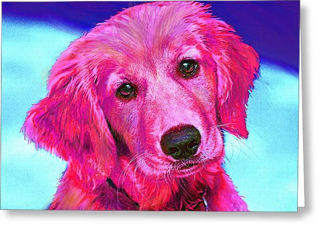 Golden Retriever Digital Art Greeting Cards - Pink Retriever Greeting Card by Jane Schnetlage