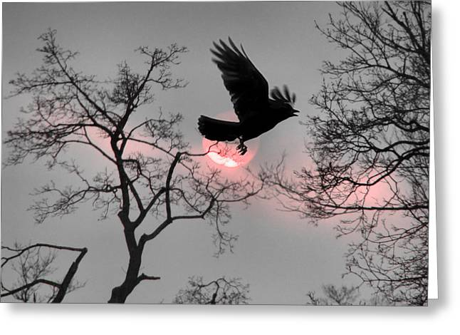 American Crow Greeting Cards - Pink Ribbon Sky Greeting Card by Gothicolors Donna Snyder