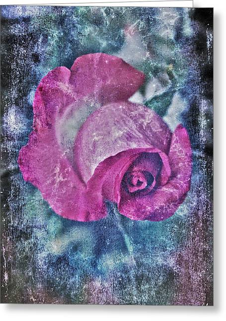 Floral Photographs Digital Greeting Cards - Pink Rose Greeting Card by Linda Sannuti