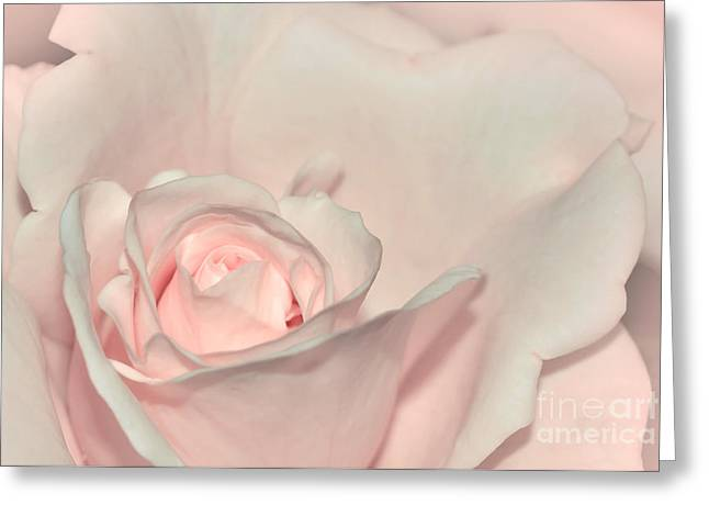 Soft Petals Greeting Cards - Pink Satin Greeting Card by Kaye Menner