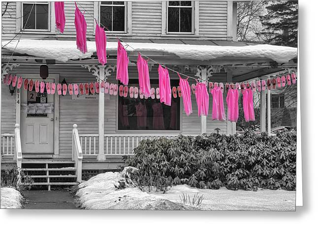 Slip Ins Greeting Cards - Pink Slips In Vermont Greeting Card by Tom Singleton