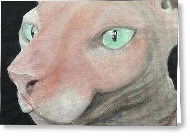 Sphynx Cat Portrait Greeting Cards - Pink Sphynx Greeting Card by Macfarlane