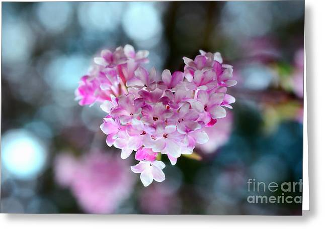 Mothers Day Greeting Cards - Pink Spring Heart Greeting Card by Sabine Jacobs