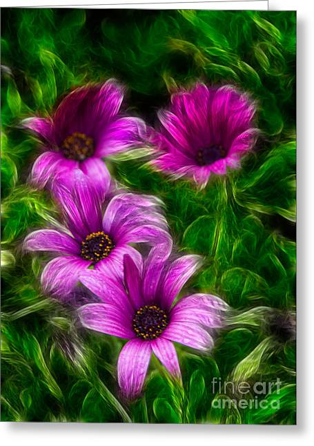 Garden Art Greeting Cards - Pink  Greeting Card by Stylianos Kleanthous