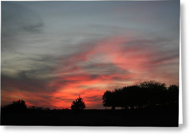 Kansas Pyrography Greeting Cards - Pink Sunset Greeting Card by Cary Amos