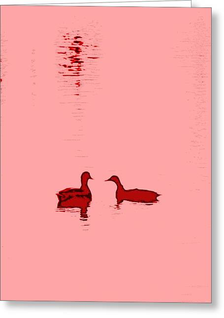 Temperament Greeting Cards - Pink Water Greeting Card by Hilde Widerberg