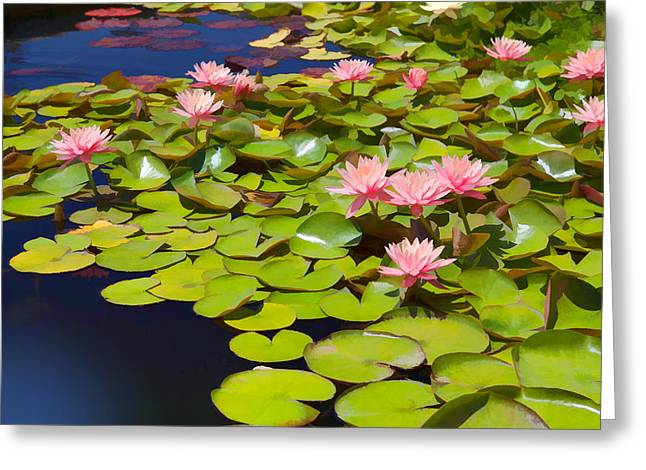 Water Garden Mixed Media Greeting Cards - Pink Waterlilies Greeting Card by Cliff Wassmann