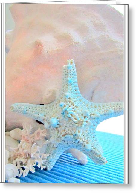 Beach Theme Posters Greeting Cards - Pink White and Blue Conch and Sea Shells  Greeting Card by Danielle  Parent