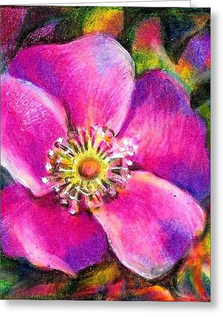 Floods Drawings Greeting Cards - Pink Wild Flower. Alberta Flood Project Greeting Card by Anna  Duyunova