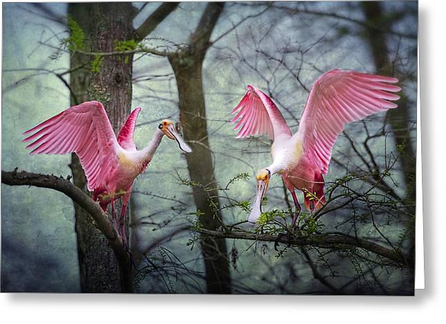 Spoonbill Greeting Cards - Pink Wings in the Swamp Greeting Card by Bonnie Barry