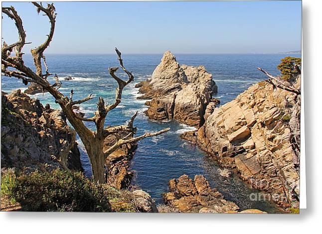 Point Lobos Photographs Greeting Cards - Pinnacle Cove Point Lobos 7686 Greeting Card by Jack Schultz