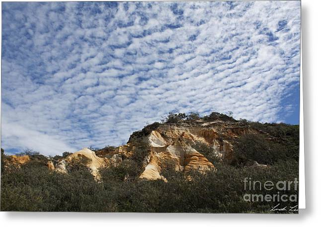 Coloured Greeting Cards - Pinnacles of Fraser Island Greeting Card by Linda Lees