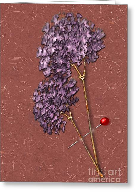 Installation Art Greeting Cards - Pinned Purple Corsage Greeting Card by Tina M Wenger
