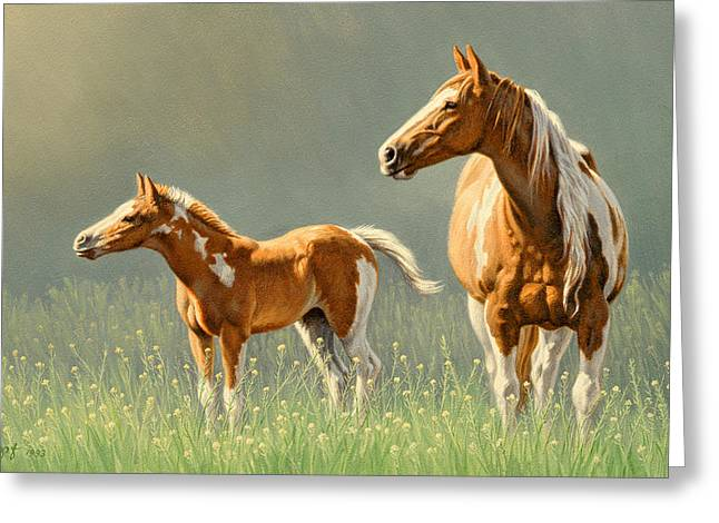 Hoses Greeting Cards - Pinto Mare and Colt Greeting Card by Paul Krapf